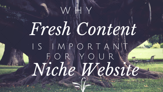 Why Fresh Content is Important for Your Niche Website